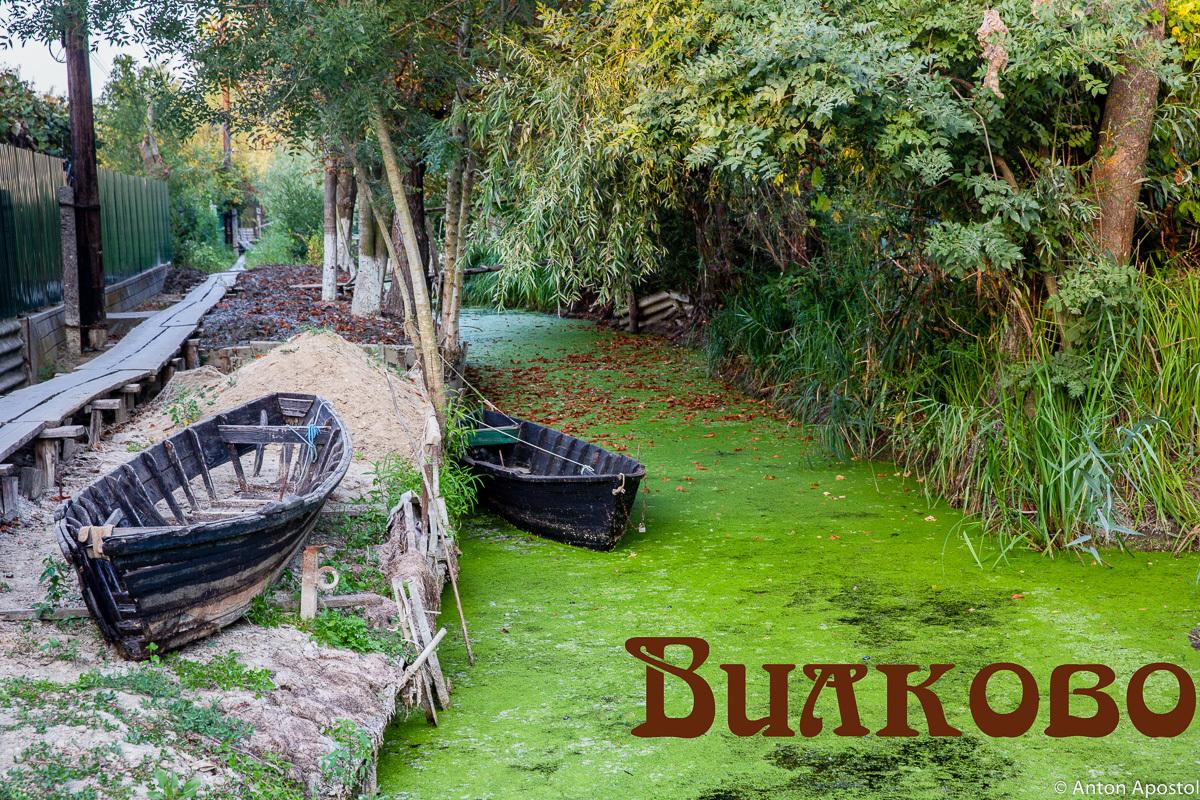 Каналы, ерики, канавки.