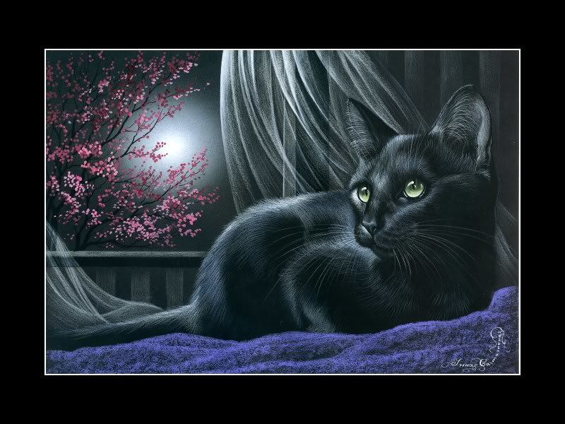 White Cat ACEO Print Things To Do At Night by I Garmashova