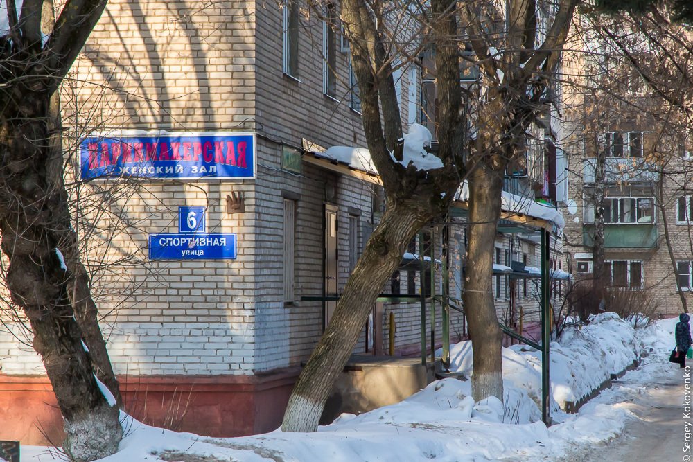МосОблЭтноЭксп: Дедовск, март 2018 -
